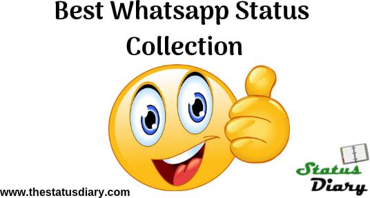 Mix Get Latest Hinglish Whatsapp Status Whatsapp Quotes