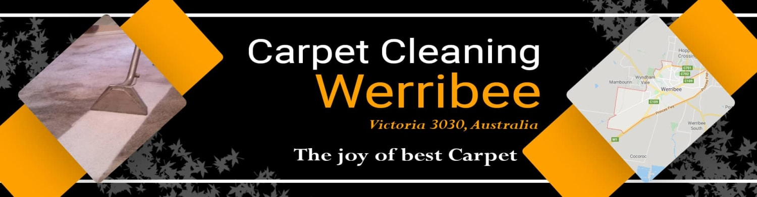Same Day Carpet Steam Cleaning